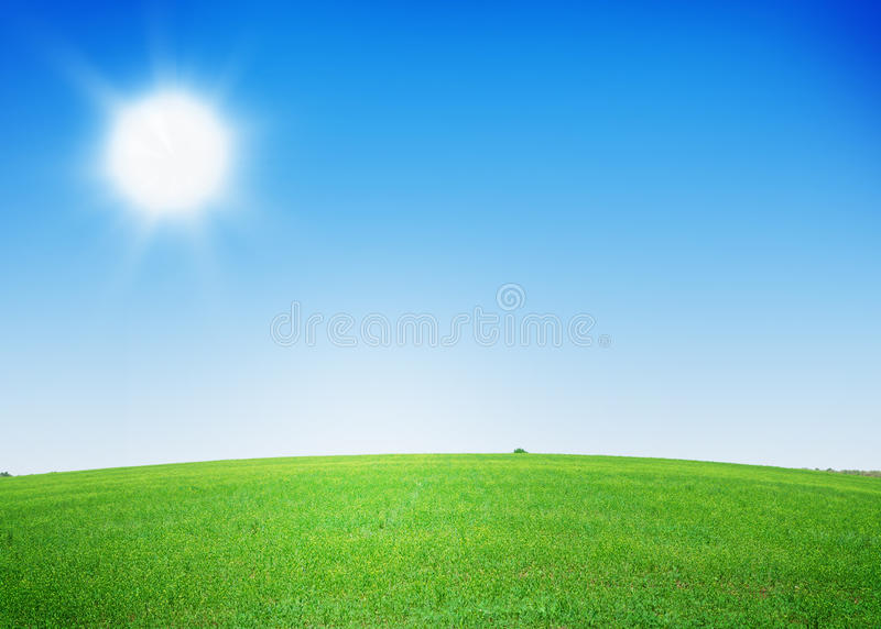 Green grass field and clear blue sky. Background stock images