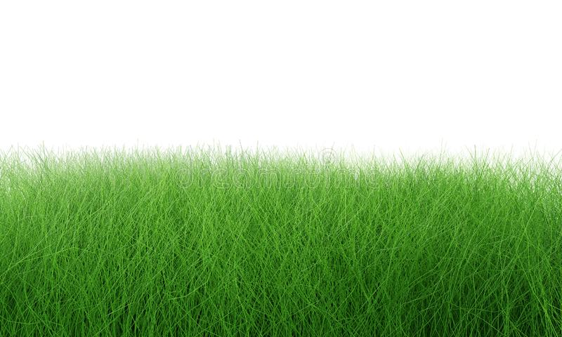Green grass field isolated on white with clipping path. Artificial lawn grass carpet for sport background. Background for stock image