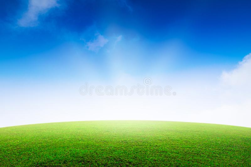 Summer Grassland Stock Photo. Image Of Copyspace, Natural