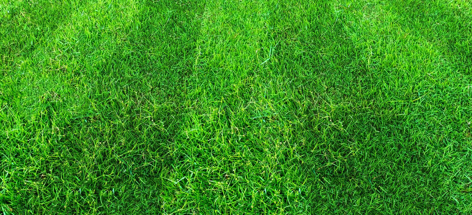 Green grass field pattern background for soccer and football sports. Green lawn texture background. Green grass field pattern background for soccer and football stock images