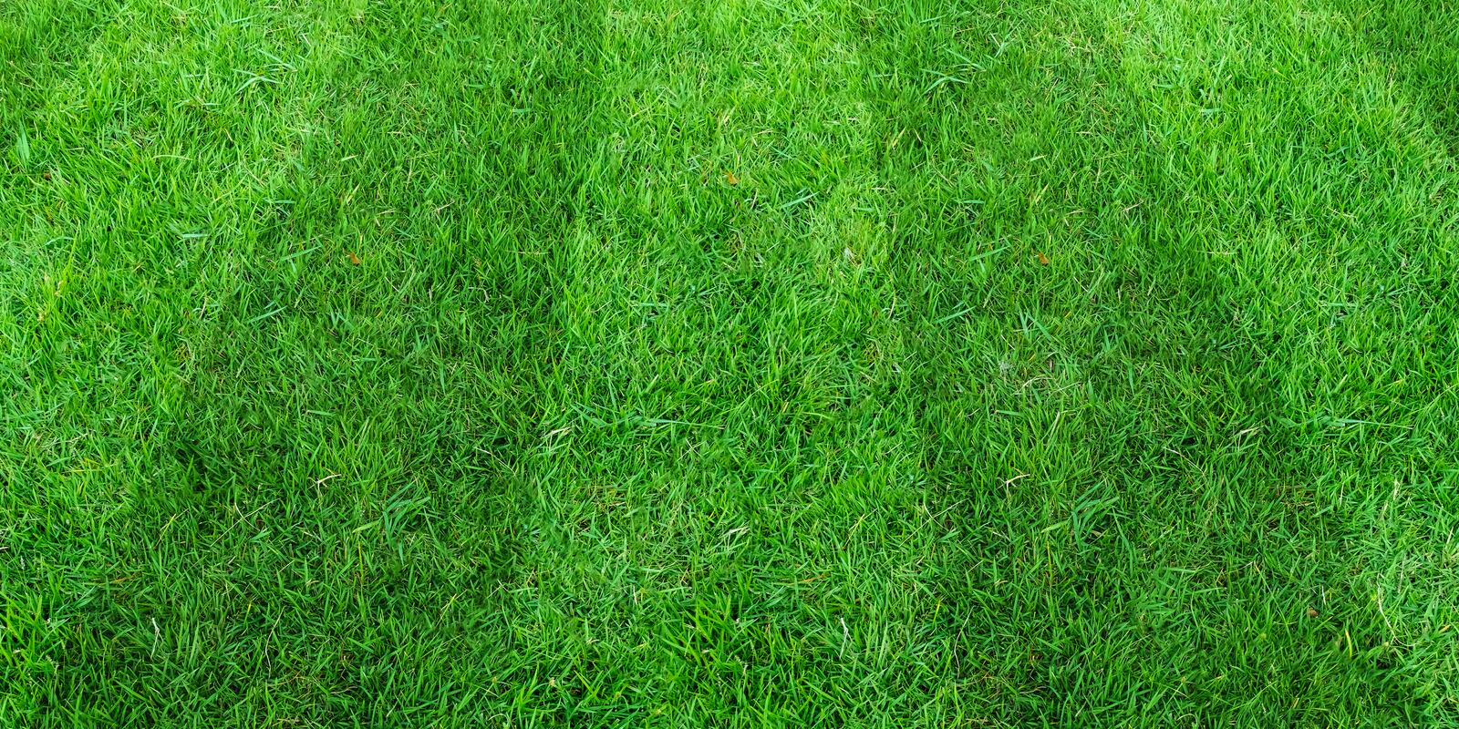 Green grass field pattern background for soccer and football sports. Green lawn pattern texture background. Green grass field pattern background for soccer and royalty free stock photos