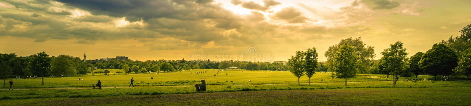 Green Grass Field during Sunset royalty free stock photos