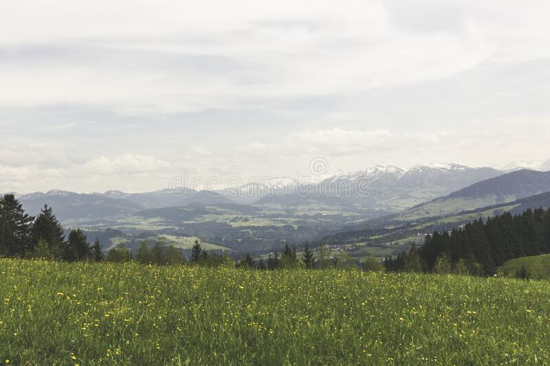 Green Grass Field Under Grey Clear Sky Overlooking Mountains stock photos