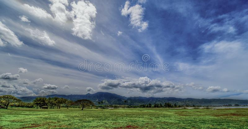 Green Grass Field Under White and Blue Sky at Daytime royalty free stock image