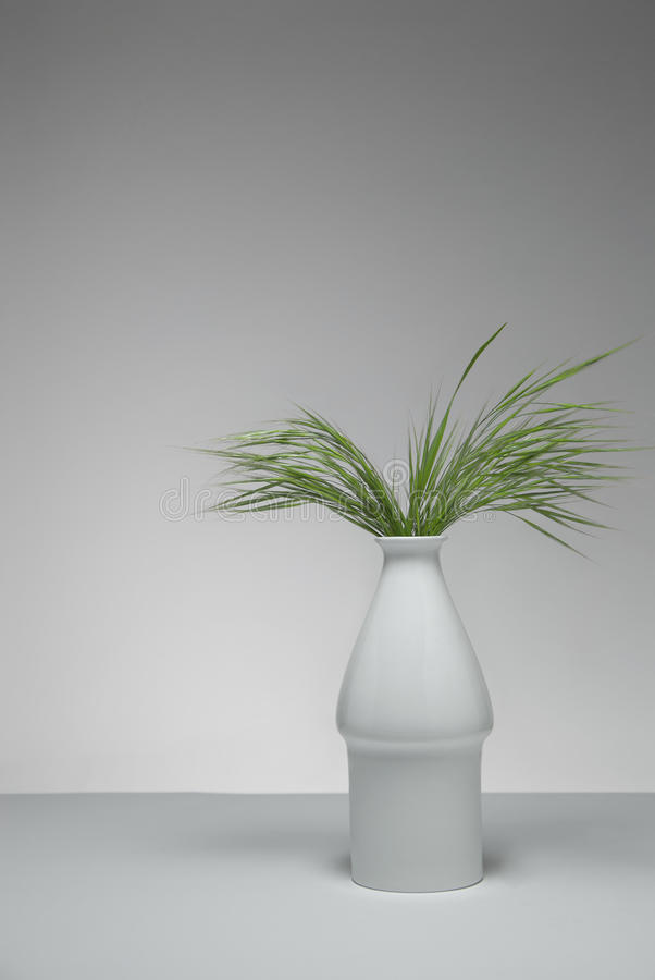 Green grass in flowerpot. Background with a flowerpot with green grass in a minimalistic environment. Studio shot royalty free stock image