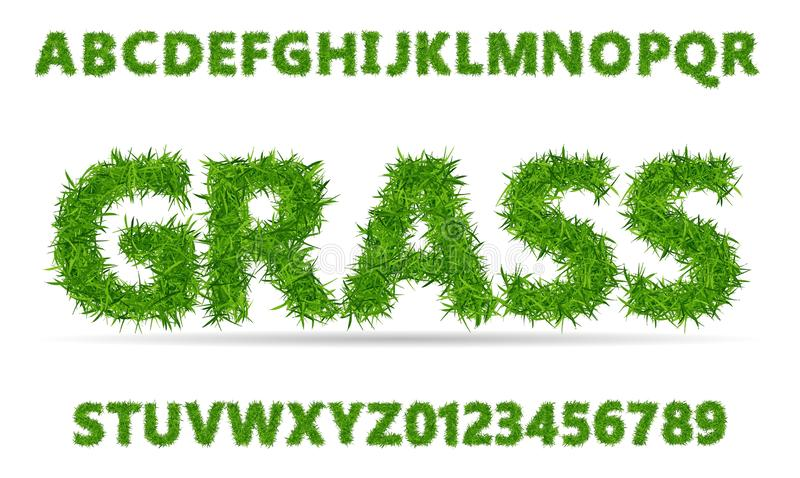 Green grass font. Lawn texture alphabet with numbers on white background. Vector illustration royalty free illustration