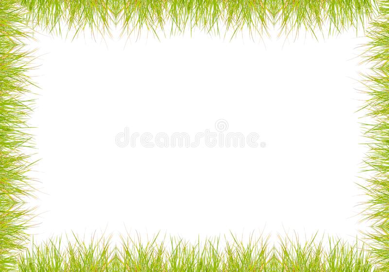 Green grass frame over white royalty free stock photo