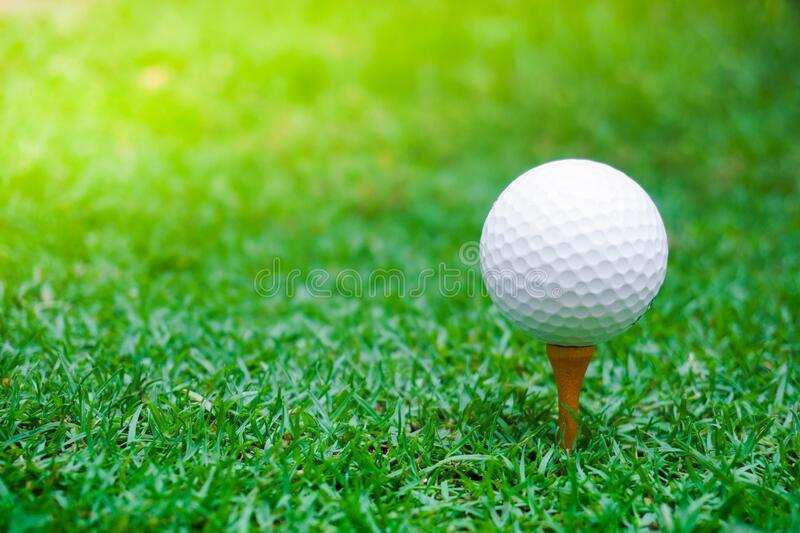 Green grass with golf ball close-up in soft focus at sunlight. Sport playground for golf club concept ,Golf ball on tee ready to royalty free stock photo