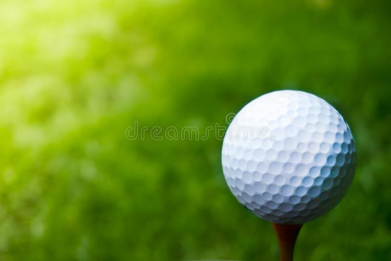 Green grass with golf ball close-up in soft focus at sunlight. Sport playground for golf club concept ,Golf ball on tee ready to royalty free stock photos