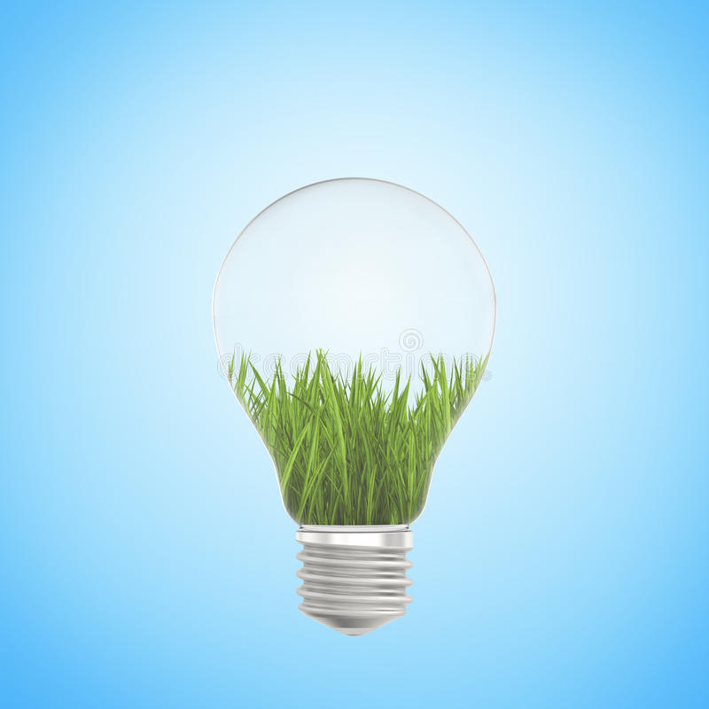 Green grass growing in a light bulb on blue background royalty free stock image
