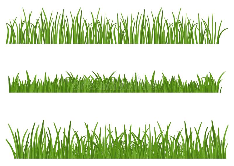 Green Grass isolated on white background. Set of Grass heights design elements of nature. Lawn. Vector illustration royalty free illustration