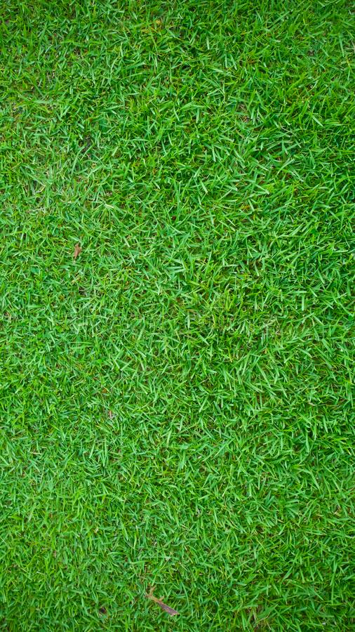 Green Grass Lawn Background And Texture For Wallpaper And Presentation Stock Photo Image Of Travel Other 122573194