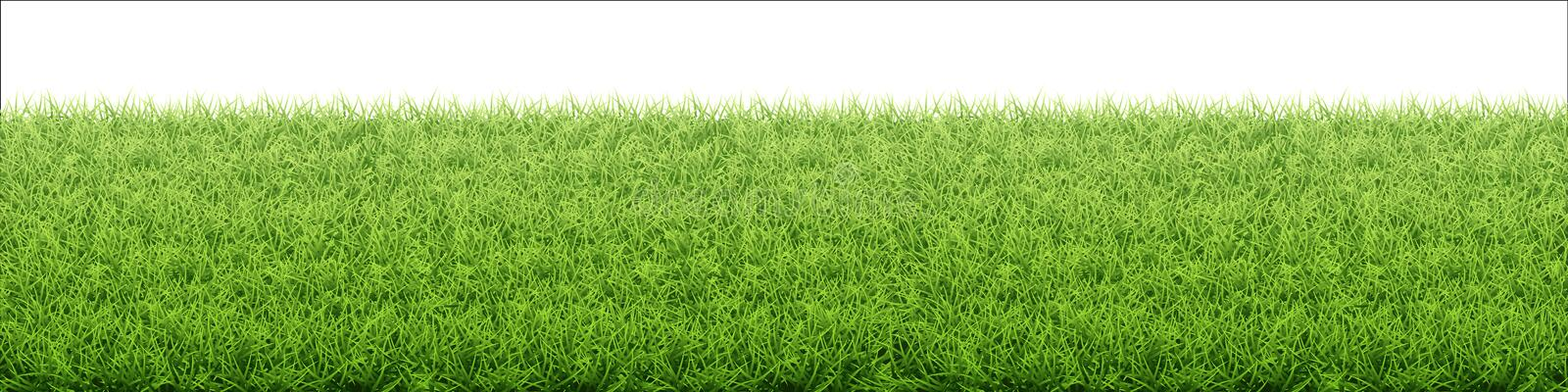 Green grass lawn. Border from fresh grass field. Background for design natural countryside landscape stock illustration