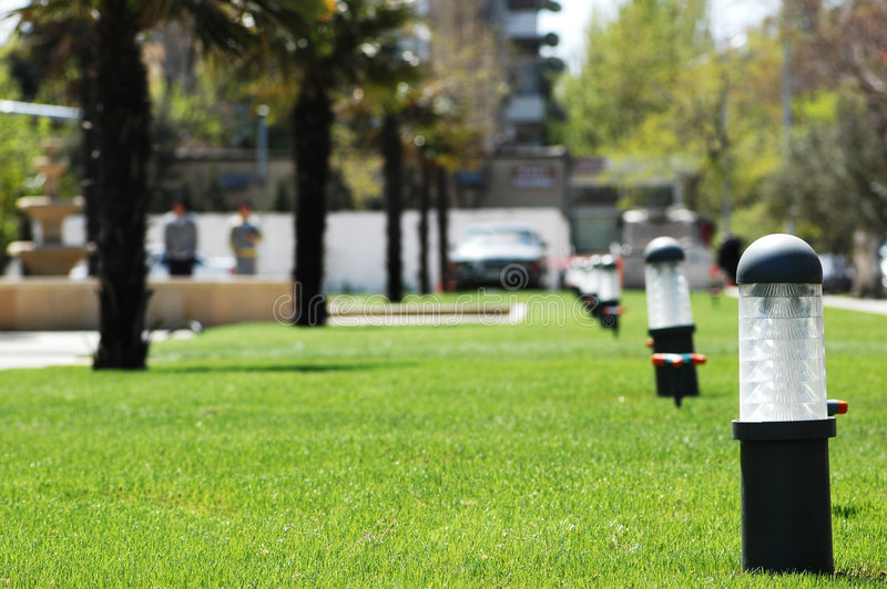 Download Green Grass Lawn With Palms Stock Photo - Image: 2375594