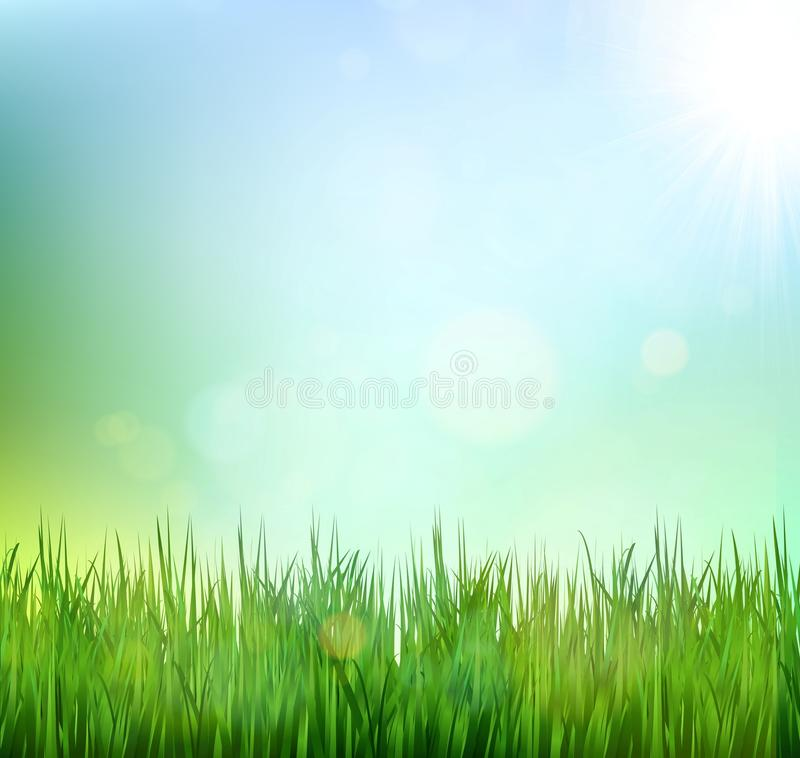 Green grass lawn with sunrise on blue sky. Floral nature spring background stock illustration