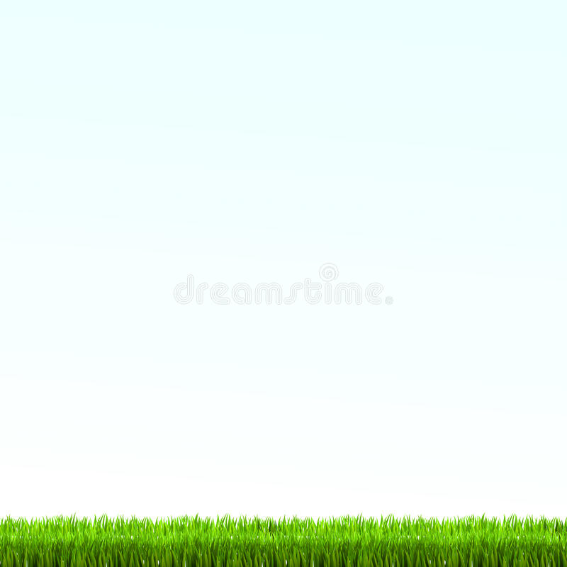 Green grass lawn with sunrise on blue sky. Vector illustration vector illustration
