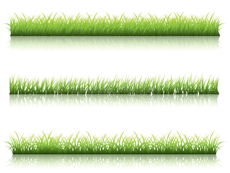 Line Drawing Grass : Green grass line royalty free stock image