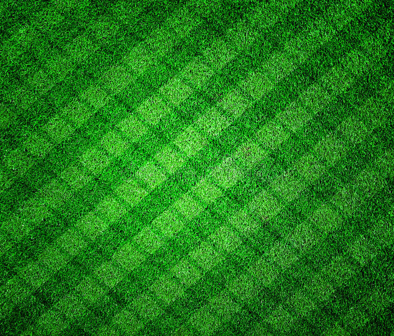 Download Green grass lined stock image. Image of pattern, meadow - 39515249