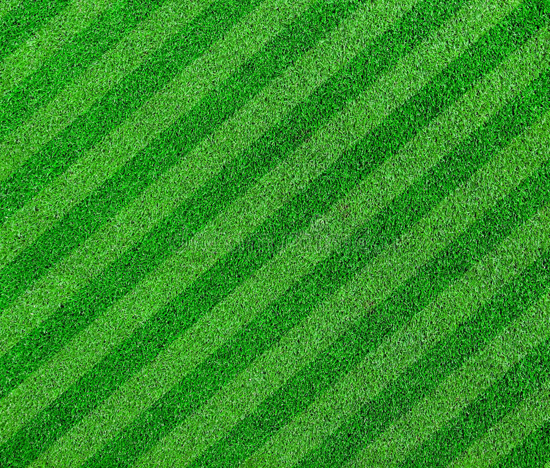Download Green Grass Lined  Soccer Field Stock Image - Image of flora, greenery: 39512317
