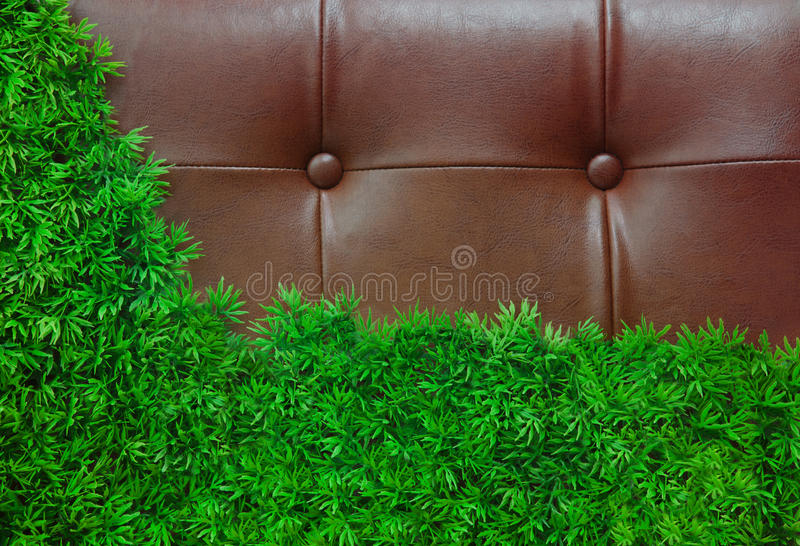 Download Green Grass And Luxury Leather Stock Photo - Image: 26733112