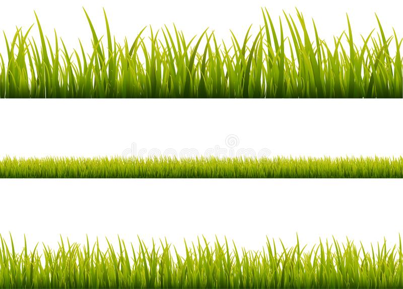 Green grass meadow border vector pattern. Spring or summer plant field lawn. Grass background stock illustration