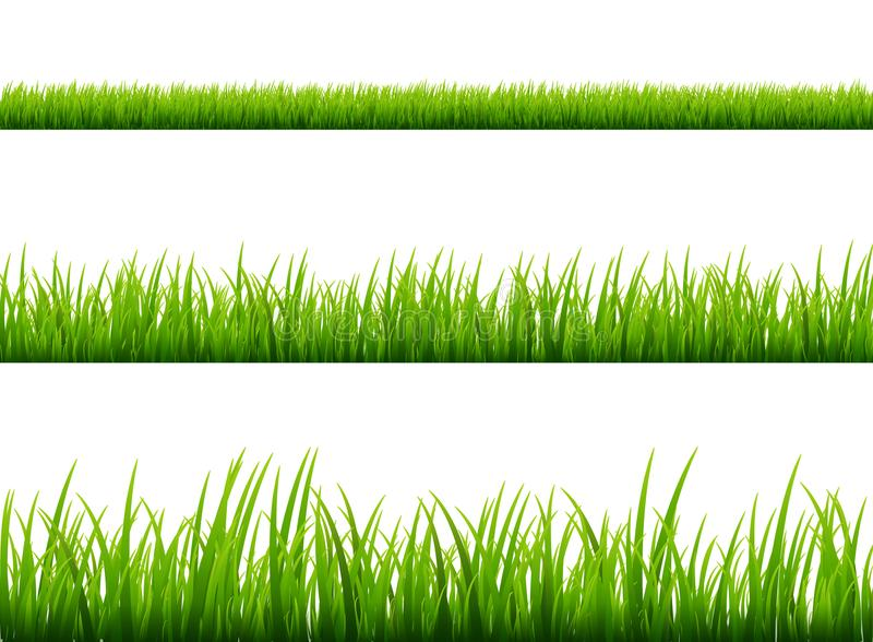 Green grass meadow border vector pattern. Spring or summer plant field lawn. Grass background vector illustration