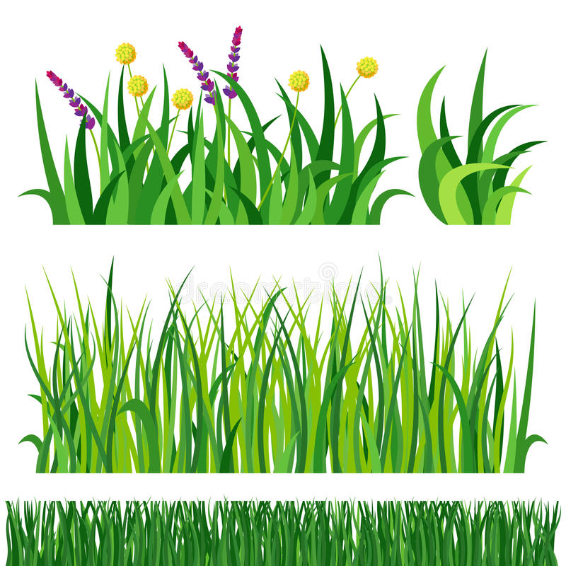 green grass nature design elements vector illustration isolated grow rh dreamstime com vector grasshopper vector grass blades