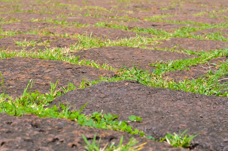 Green grass and Old stone wall, old surface, old texture stock photos