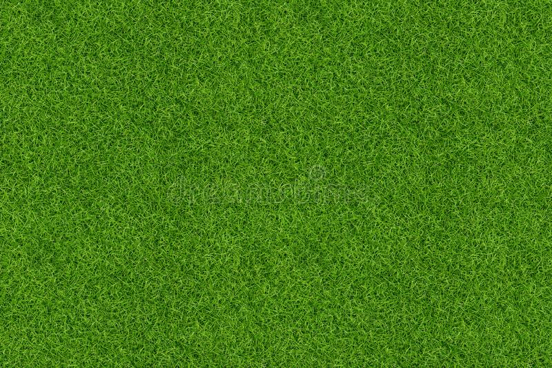 Green grass pattern and texture for background. Close-up. Image royalty free stock photos