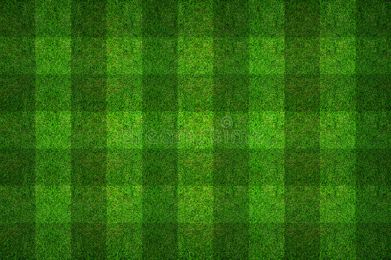 Green grass pattern texture for soccer field background. royalty free stock images