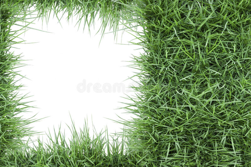 Green grass photo frame royalty free stock image