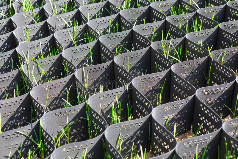 Green grass in a plastic black honeycomb frame to prevent soil erosion. On the slope royalty free stock photography