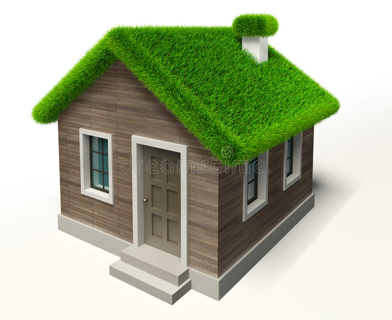 Green Grass Roof House Stock Illustration