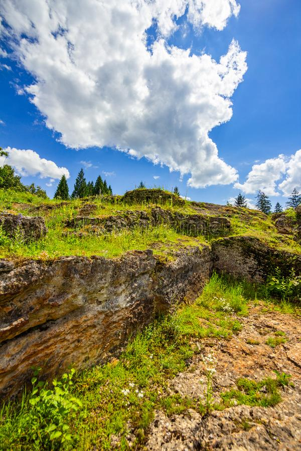 Green grass on ruin walls stock photos