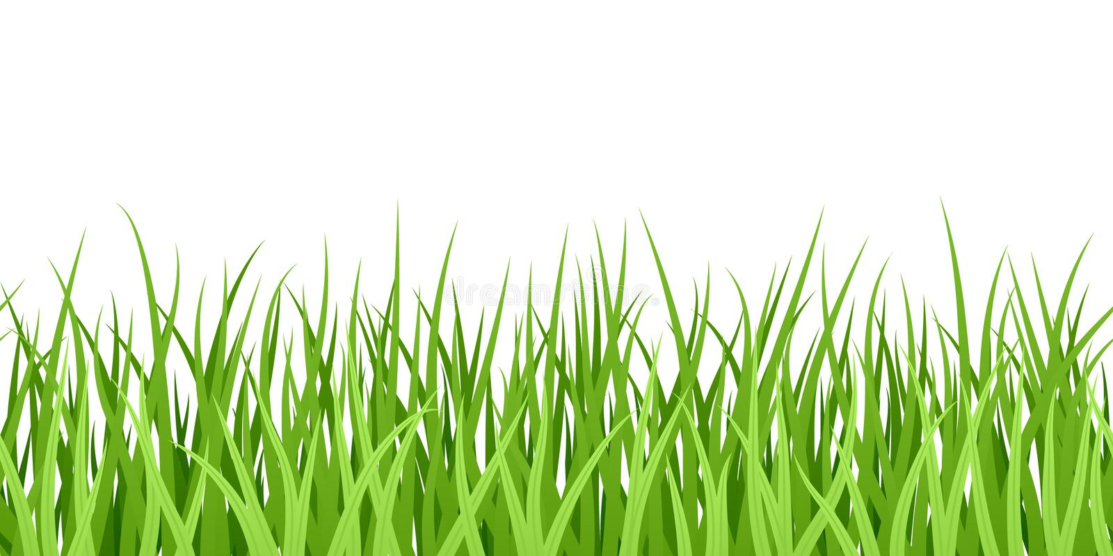 Green Grass. Seamless Illustration. Stock Photography