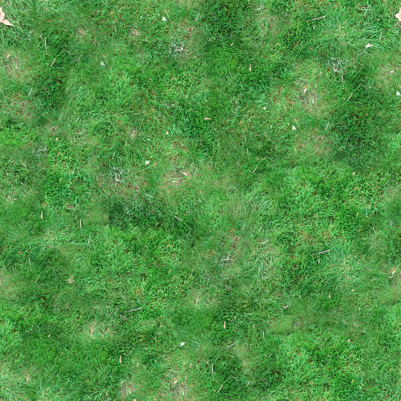 Download Green Grass Seamless Tile Texture Stock Photo - Image: 57503316