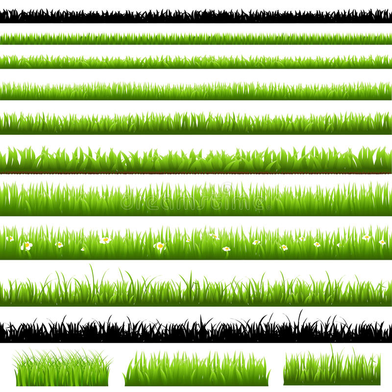 Green Grass Set vector illustration