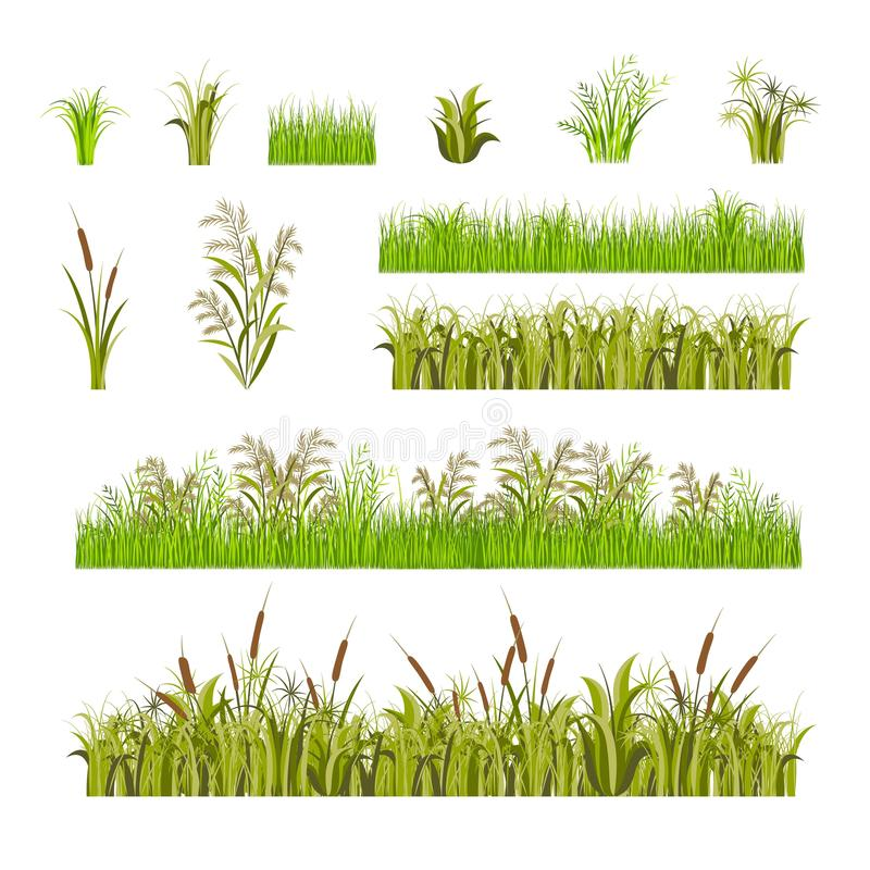 Green Grass Set Decor Elements Isolated on a White Background. Vector royalty free illustration