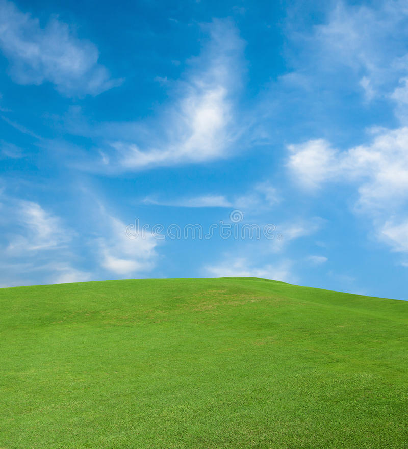 Green grass and the sky. With clouds stock photo