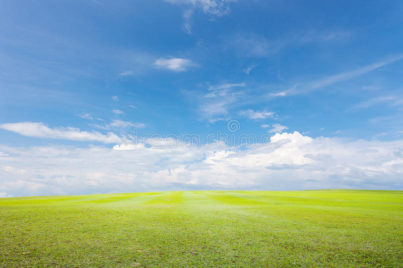 Green grass and sky cloud background. Green grass and sky cloud background royalty free stock images