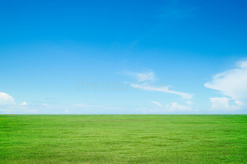 Green grass and sky. Nature background royalty free stock image