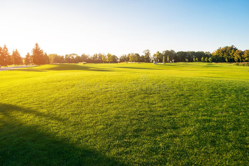 Green grass and sky. People on meadow. Perfect place to rest. Sunny summer day stock photos
