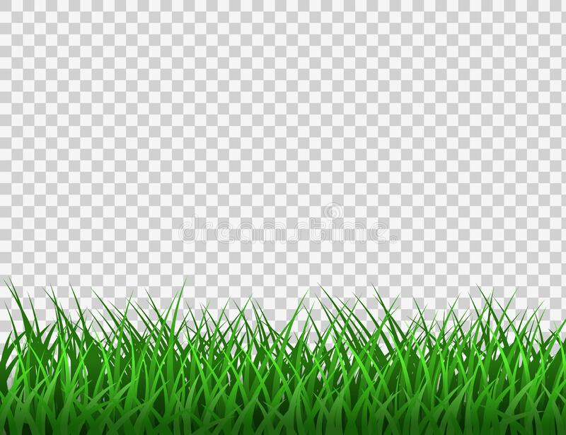 Dry Grass Transparent Background , Free Transparent Clipart - ClipartKey