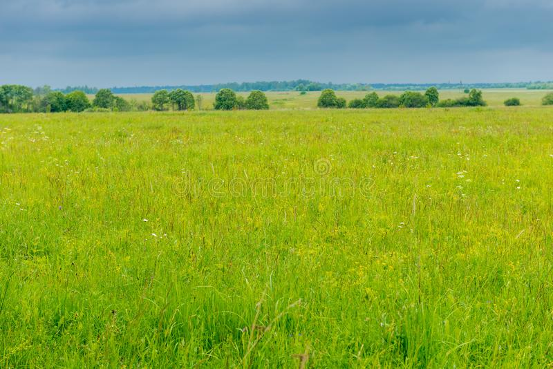Green grass in the spring field and heavy rain clouds. In the sky royalty free stock image