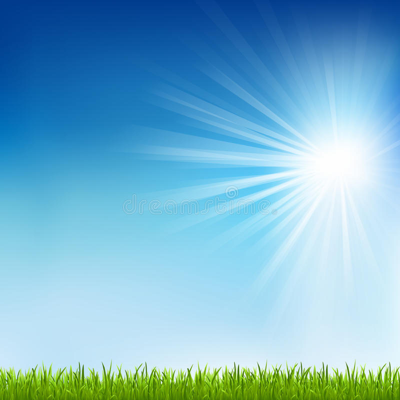 Download Green Grass And Sun Beam stock photo. Image of foliage - 24878874
