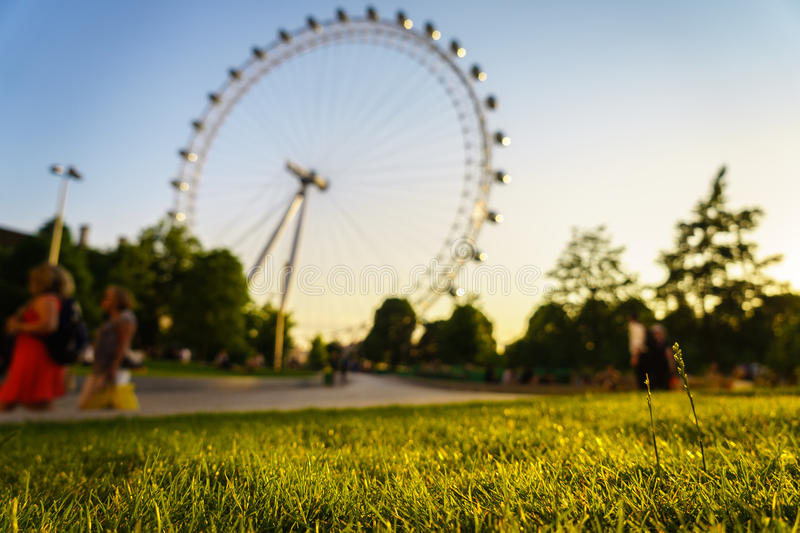 Green grass with London Eye stock images
