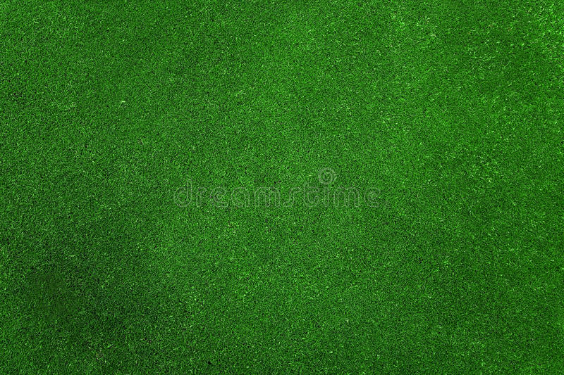 Download Green grass texture stock photo. Image of summer, nature - 12390892