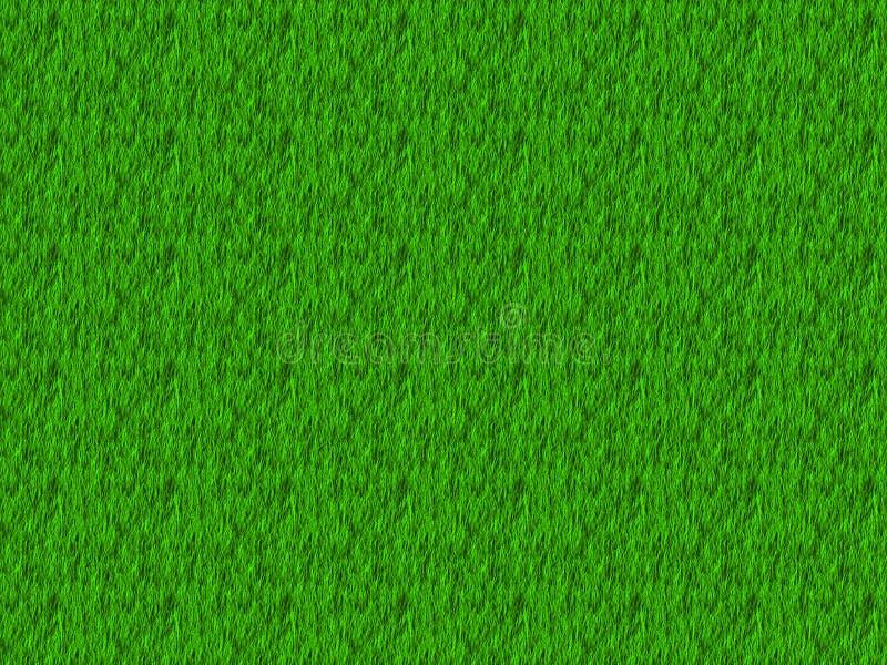 Green grass texture vector illustration