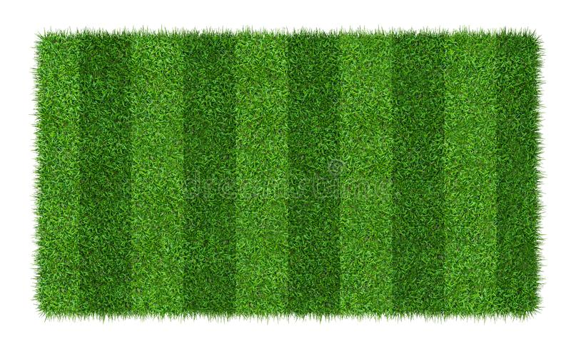 Green grass texture background for soccer and football sports. Green grass field pattern and texture isolated on white background royalty free stock photo