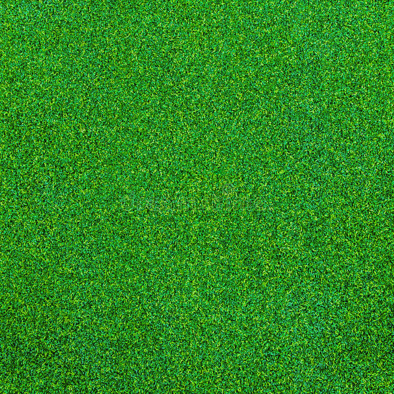 Free Green Grass Texture For Background Stock Images - 31898694